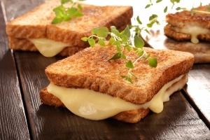 Toster czy opiekacz do kanapek - co wybrać?